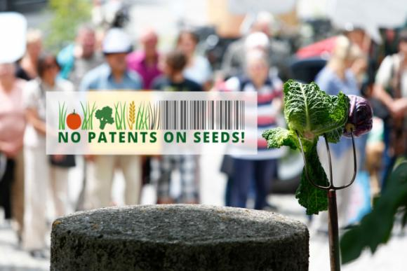 no patents on seeds bild kohl